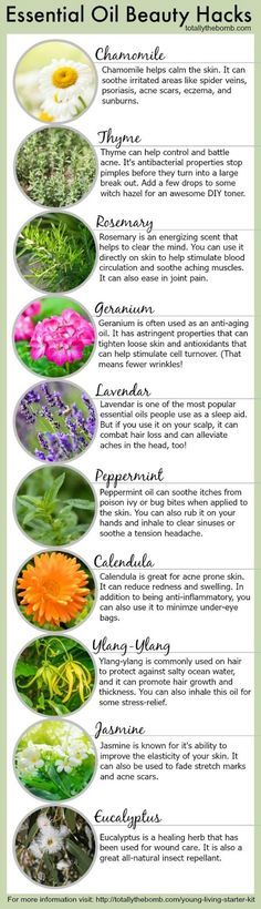 Essential Oil Beauty Hacks - Infographic from Totally the Bomb   An Ancient Beauty Secret   There are thousands of commercial beauty produ...