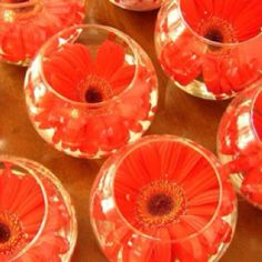 Flower Floating in small Glass Vase Centerpieces