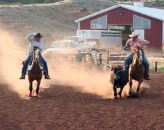 Roping at Red Reflet Ranch #rodeo #wyoming http://www.ranchseeker.com/Search/RedRefletRanch