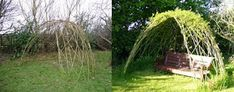 I am currently looking into organising a weekend workshop in live willow structures in West Cork, which has inspired me to write a post on t...