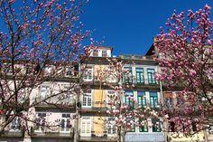 Las mil caras de Oporto: Guía de Viaje | La Bici Azul: Blog de decoración, tendencias, DIY, recetas y arte