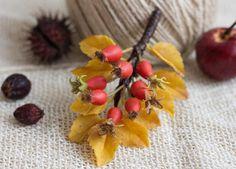 Berry Jewelry Brooch Nature Polymer clay Flower Women Brooch