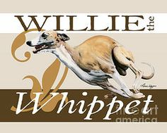 Whippet Paintings - Willie the Whippet by Liane Weyers