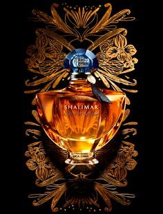 La Legende de Shalimar by Guerlain.another fragrance icon. so distinct like Chanel, unmistakable . Best perfume ever Natalia Vodianova, Shalimar Guerlain, Anuncio Perfume, Antique Perfume Bottles, Beautiful Perfume, Perfume Collection, Tea Tree Oil, Gift Guide, Candy Gifts