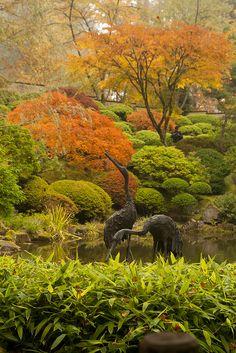 Rhone Street Gardens Blog: Japanese Garden Visit