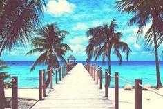 Palm Tree Beach Tropical Ocean Pier Window View Removable Wall Decals Sticker Art Home Decor Kids Mural Paradise Wallpaper, Sunset Wallpaper, Wallpaper Desktop, Widescreen Wallpaper, Hd Desktop, Wallpapers, Summer Pictures, Beach Pictures, Strand Wallpaper