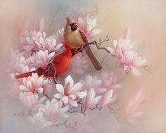 Hey, I found this really awesome Etsy listing at https://www.etsy.com/listing/129423343/cardinals-and-magnolia-original
