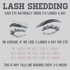 "219 Likes, 14 Comments - Certified Lash Technician (@lashed_byriri) on Instagram: ""Lash shedding is the reason you should be maintaining your lashes with refills every 2-3 weeks. You…"" #eyelash"