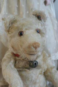 Antique steiff teddy baby bear 1930 www.antiekepop.nl
