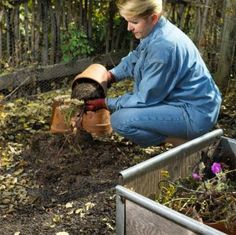 Check off these chores and get your lawn and gardens ready for winter! Garden Edging, Lawn And Garden, Garden Beds, Home And Garden, Autumn Flowering Plants, Fall Plants, Backyard Farmer, Autumn Garden, Plant Care