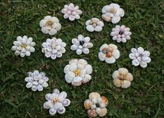 DIY Shell Flowers Tutorial #DIY #diy #shellproject #shellflowers #shellflowertutorial