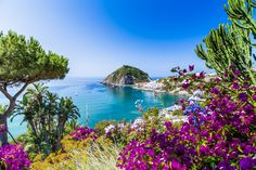 The 7 Most Beautiful Islands in Italy!