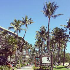 Hawaii 2014 #hawaii #kauai #crewmember #cruising #palmtrees