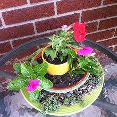 Cup, bowl, and plate garden art! The inspiration came from a pot-in-pot idea that Glenda mentioned!