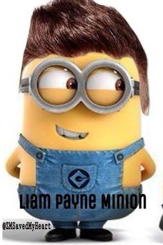 Minion 1D - Liam