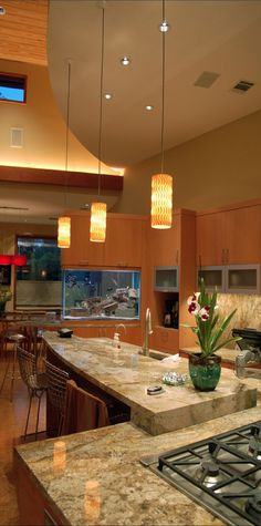 Aquarium On Pinterest Aga Wall Aquarium And Million Dollar Rooms