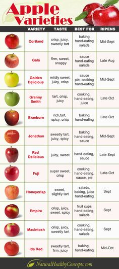 Apple varieties infographic from Natural Healthy Concepts. Learn more about apple varieties today! Fruit Recipes, Apple Recipes, Noodle Recipes, Vegetable Recipes, Healthy Snacks, Healthy Eating, Healthy Recipes, Thai Recipes, Indian Recipes
