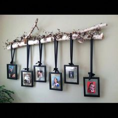 Decorațiuni interioare din crengi și ramuri - In Casa Noua Decoration Branches, Birch Tree Decor, Tree Branch Decor, Tree Branches, Decorating With Branches, Tree Branch Crafts, Decorations, Rustic Decor, Farmhouse Decor