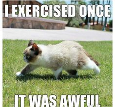 I exercised once, it was awful
