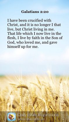 DAILY BIBLE INSPIRATION: I have been crucified with Christ, and it is no longer I that live, but Christ living in me. That life which I now live in the flesh, I live by faith in the Son of God, who loved me, and gave himself up for me. ~ {GALATIANS 2:20}