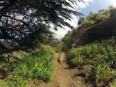 Camino de Aguaide