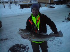 Interested in your life biggest cod? I know the place! fore more information check out http://storlaksen.com/index.php/no/