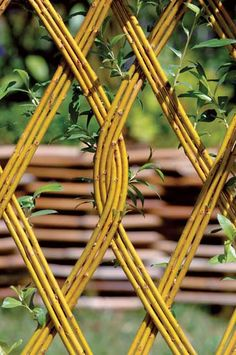 Find inspiration on how to work with willow rods and create your own unique fences, arbors, and more.