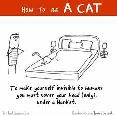 ...under a blanket