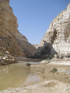 "The Wilderness of Zin, Israel - went on a day long hike through this ""wadi"""