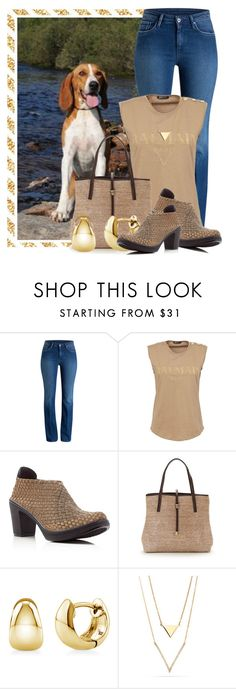"""""""Another Cute Hygenhund"""" by queenrachietemplateaddict ❤ liked on Polyvore featuring Balmain, Steven by Steve Madden, BERRICLE, brown, dog, animal, onepicture and hygenhund"""