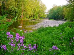 Favorite trout stream near by. Little Juniata