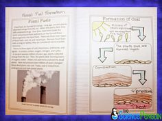 Free Fossil Fuels Lesson-- includes the formation of coal