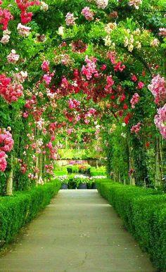 Beautiful Landscape Wallpaper, Beautiful Flowers Wallpapers, Beautiful Nature Pictures, Beautiful Landscapes, Beautiful Wallpaper, Most Beautiful Gardens, Beautiful Flowers Garden, Beautiful Places, Garden Arbor