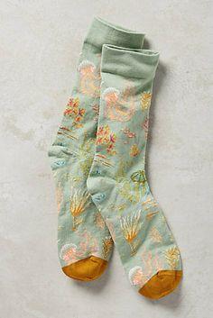 Jelly Socks