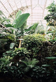 The Conservatories | The Garden Edit