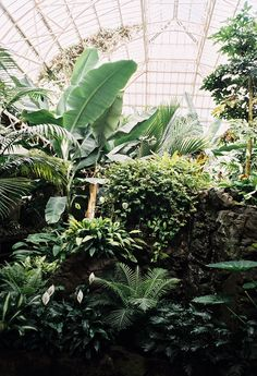 The Conservatories | The Garden Edit