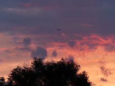 Levé de soleil - Sunrise  https://www.facebook.com/pages/Sciom-Photographer/461692483933397  Sciom Photographer