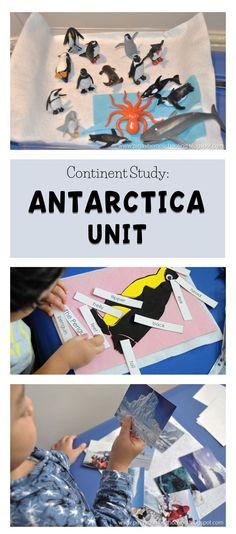 unit for kids - Arctic Animals - Geography Activities, Geography For Kids, Teaching Geography, Teaching Kindergarten, Teaching Kids, Kids Learning, Preschool At Home, Toddler Preschool, Infant Activities