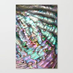 Abalone Shell Canvas Print by BrooklynThread. Worldwide shipping available at Society6.com. Just one of millions of high quality products available.