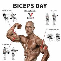 The Absolute Best Biceps Workout: 4 Biceps Exercises That Build Big Biceps
