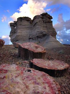 Colorful sedimentary badland hills, flat-topped mesas, & sculptured buttes of the Chinle Formation exposing fossils & petrified wood - Petrified Forest National Park's Photo