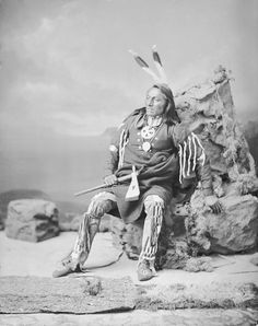Portrait (Profile) of Ga-Hi-Ge (The Chief) - Ponca Tribe in Partial Native Dress with Peace Medal and Ornaments and Holding Pipe-tomahawk 14 NOV 1877 by William Henry Jackson (1843-1942)