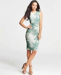 Petite sheath dress - Google Search