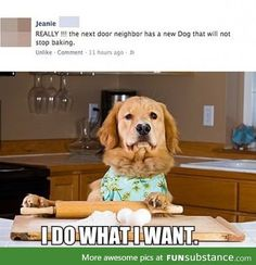*barking Why is this soo funny?!?!