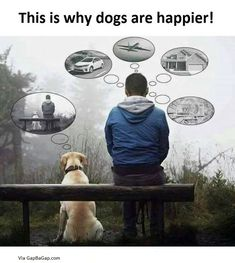 Well Said Quotes About Dogs vs. Humans