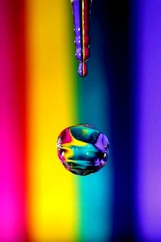 Taste The Rainbow! Love Rainbow, Taste The Rainbow, Over The Rainbow, Rainbow Colors, Rainbow Water, Fotografia Macro, World Of Color, Color Of Life, Color Splash