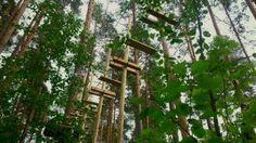 insight out Hochseilgartenbau :: Hochseilgarten Joensuu Finnland