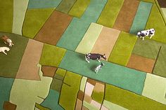 Florian Pucher Land Rugs, perfect to add a green nature touch to the room #kidsroom #rugs #kidsroomdecor Find more inspirations at www.circu.net