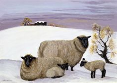 Margaret Loxton ~ sheep painting