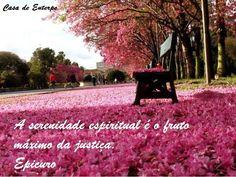 """Casa de Euterpe: """"A serenidade... - Epicuro"""